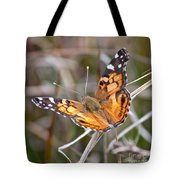 Painted Lady Square Tote Bag