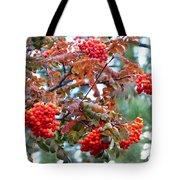 Painted Mountain Ash Berries Tote Bag