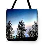 Painted Pine Tree Trio Tote Bag