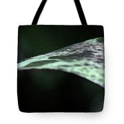 Painted Shades Of Green - 1 Tote Bag