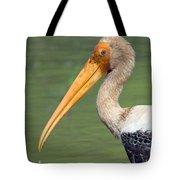 Painted Stork Mycteria Leucocephala Tote Bag