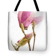Painterly Pink Magnolia Tote Bag