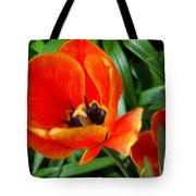 Painterly Red Tulips Tote Bag