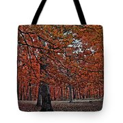 Painterly Style Autumn Trees Tote Bag