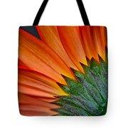 Painters Brush Tote Bag