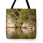Painting White Rocks Tote Bag