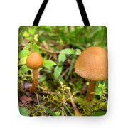 Pair O Mushrooms Tote Bag