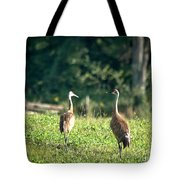 Pair Of Cranes Tote Bag