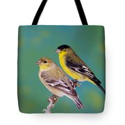 Pair Of Lesser Goldfinches Tote Bag