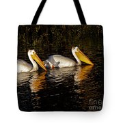 Pair Of Pelicans   #6935 Tote Bag