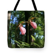 Pair Of Pink Lady Slippers  Tote Bag