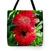 Pair Of Red Gerber Daisy Flowers With Ladybug Tote Bag