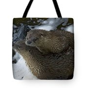 Pair Of River Otters   #1266 Tote Bag