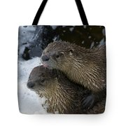 Pair Of River Otters   #1301 Tote Bag