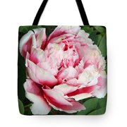 Pale And Dark Pink Peony Tote Bag