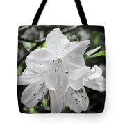 Pale Beauty Tote Bag