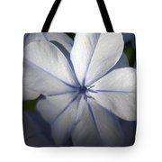Pale Blue Plumbago Flower Close Up  Tote Bag