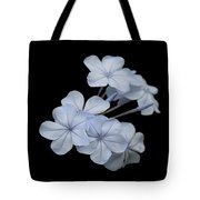 Pale Blue Plumbago Isolated On Black Background  Tote Bag