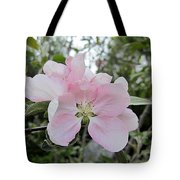 Pale Pink Crabapple Blossom Tote Bag