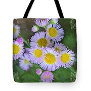 Pale Pink Fleabane Blooms With Decorations Tote Bag