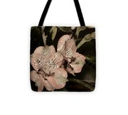 Pale Pink Lilies On Dark Background Tote Bag