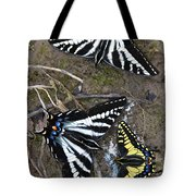 Pale Swallowtails And Western Tiger Swallowtail Butterflies Tote Bag