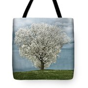 Pale White Tree On Cloudy Spring Day E83 Tote Bag