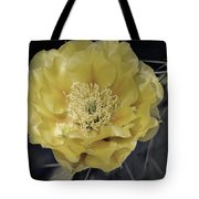 Pale Yellow Prickly Pear Bloom  Tote Bag