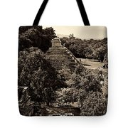 Palenque From The Jungle Panorama Sepia Tote Bag