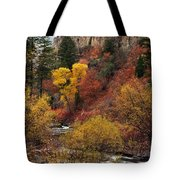 Palisades Creek Canyon Tote Bag