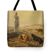 Pallas Athena And The Herdsmans Dogs Tote Bag