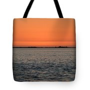 Palm Harbor Sunset Tote Bag