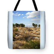 Palm Springs Indian Canyons View  Tote Bag