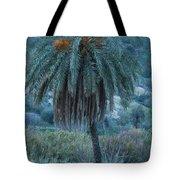Palm Tree  Almanzora Mountain Spain  Tote Bag