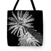 Palm Tree Black Tote Bag