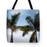Palm Tree In Costa Rica Tote Bag