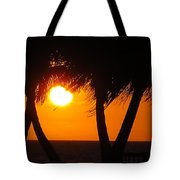 Palm Tree Silhouette At Sunset Tote Bag