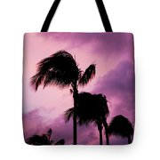 Palm Tree Silhouettes At Dusk In Aruba Tote Bag
