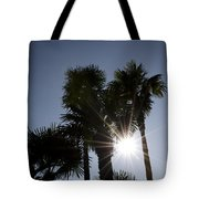 Palm Trees In Backlit Tote Bag