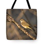 Palm Warbler Tote Bag