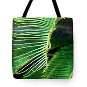 Palme Cycas Tote Bag