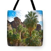 Palms Stand Tall In Andreas Canyon In Indian Canyons-ca Tote Bag