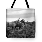 Palomino - Buttes - Wild Horses - Bw Tote Bag
