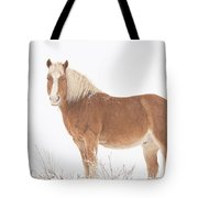 Palomino Horse In The Snow Tote Bag