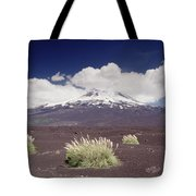 Pampas Grass And Old Lava Flow Llaima Tote Bag