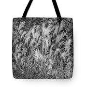Pampas Grass Monochrome Tote Bag
