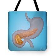 Pancreas Tote Bag