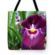 Pancy Orchid Tote Bag