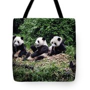 Pandas In China Tote Bag