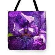 Pandora's Purple Tote Bag